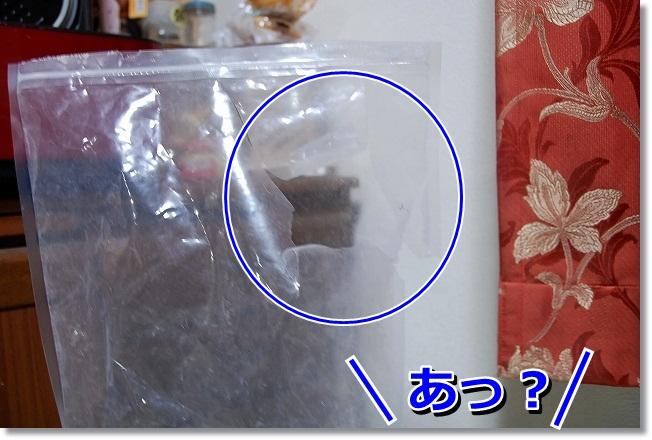 DSC_0351_20120220110705.jpg