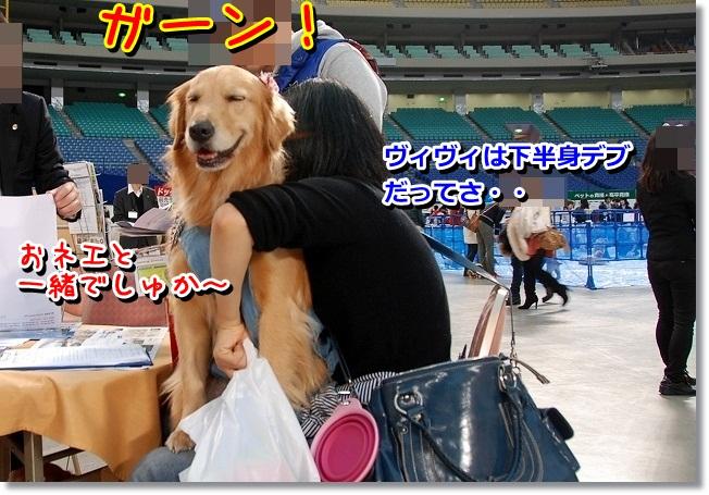 DSC_0451_20120201233431.jpg