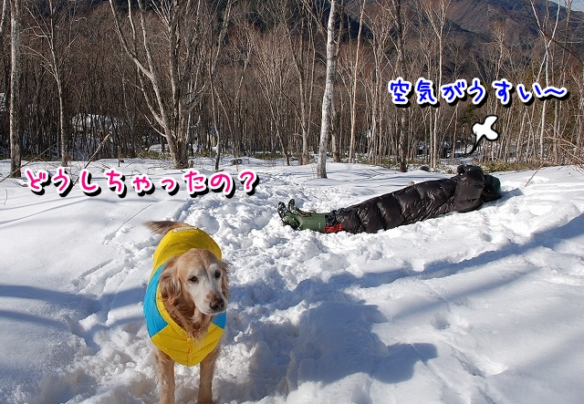 DSC_0550_20120213000913.jpg