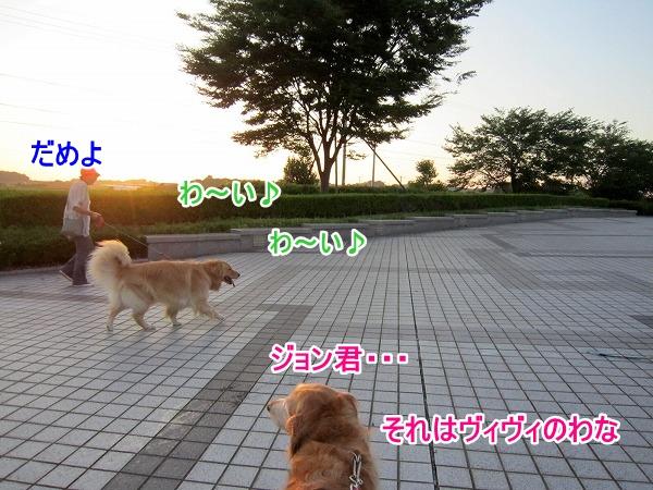 IMG_3593.jpg