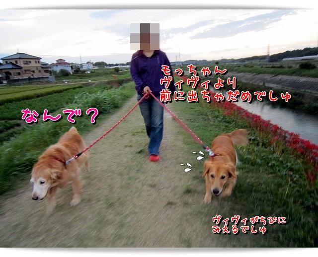 IMG_4399.jpg