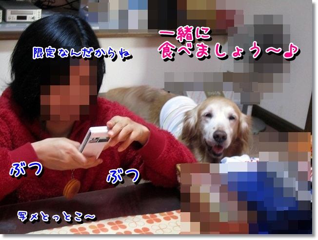 IMG_4789.jpg