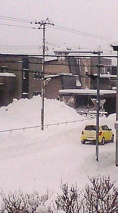 雪っ!!!!