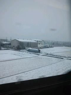 当日の雪景色
