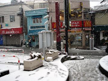 20080203.jpg