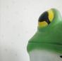 田辺 青蛙