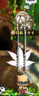 Maple0000_20080907124311.jpg