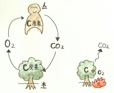 CO2の話