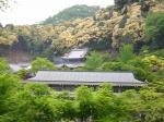 コピー ~ 2008.05 京都Ⅳ 028