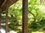 コピー ~ 2008.05 京都Ⅳ 046