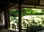 コピー ~ 2008.05 京都Ⅳ 056