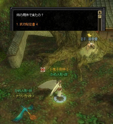 090506(武功クエ19s