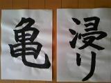 ブログ 亀チャン 962