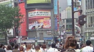 NEC_0066_20080617101626.jpg