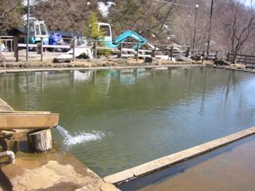 北温泉プール