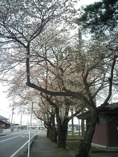 2010-04-10_15-11_0001.jpg
