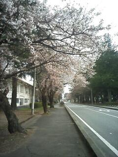 2010-04-10_15-12.jpg