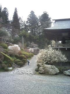 2010-04-11_14-59_0001.jpg