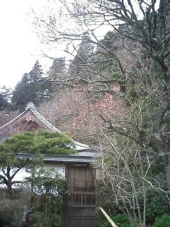 2010-04-11_15-04_0001.jpg