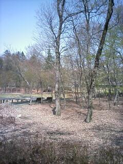 2010-04-18_10-38.jpg