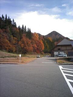 2010-11-13_11-42.jpg