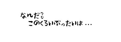 DSC_shiro1.jpg