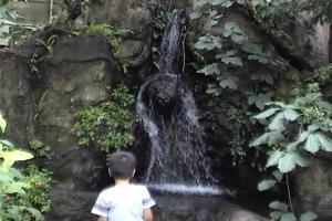 温室内の滝