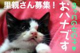 banner_ohanaboshu.jpg