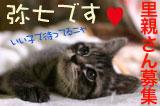 banner_yasichiboshu.jpg