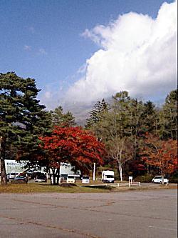 61021-2.jpg