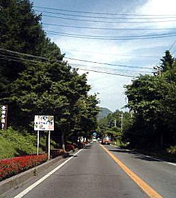 831-3.jpg