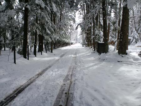 4月雪景色軽井沢