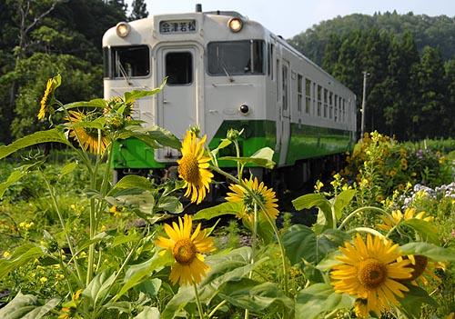 himawa0256.jpg
