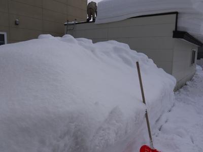 120304雪