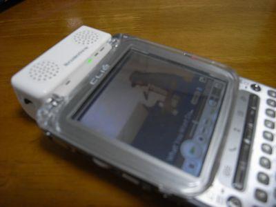 R0010499-2.jpg
