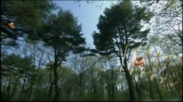 劇場版 仮面ライダーディケイド オールライダー対大ショッカー Part 1.avi_000172438