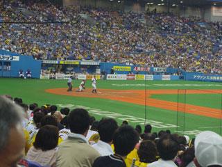 20100813.jpg