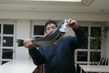 SUZUKI20101114.jpg