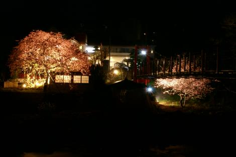 YOZAKURA20100221234816.jpg