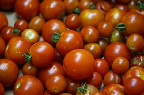 tomato20100803213448.jpg