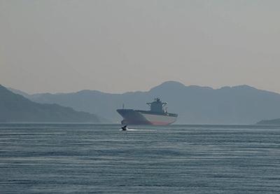 巨大戦艦…ヤマトなのか?