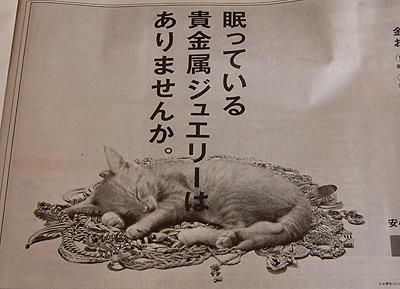 眠ってるのは猫であってジュエリーではない!