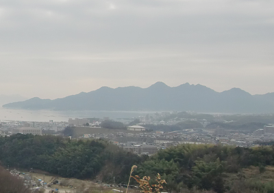 厳島神社大鳥居付近を拡大
