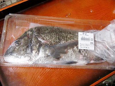 天然チヌ200円也
