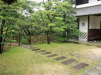 玄関前から見る庭