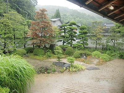 数寄屋の佇まいに相応しい優雅な趣の庭