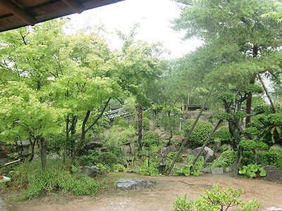 広間から見る庭園