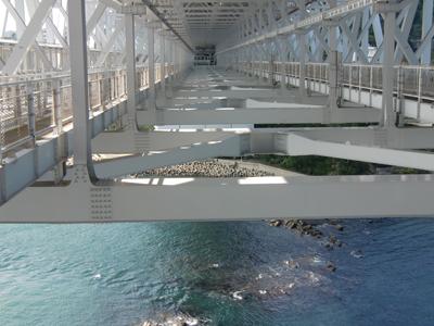 大鳴門橋の骨組
