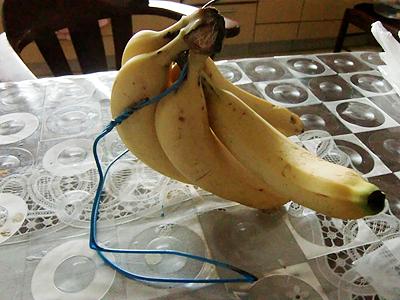 頼りないバナナスタンド