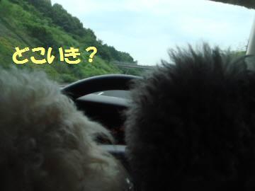 軽井沢 102